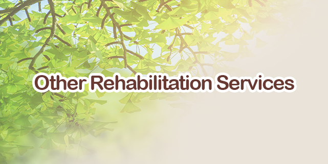 Other Rehabilitation Service
